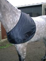 Shoulder Guards - Horse & Pony