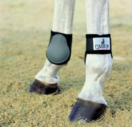 Eskadron fetlock boots for tendon protection