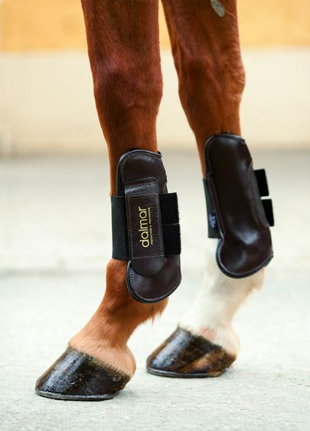 Leather Open Fronted Horse Tendon boots