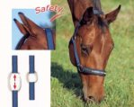Safety headcollar
